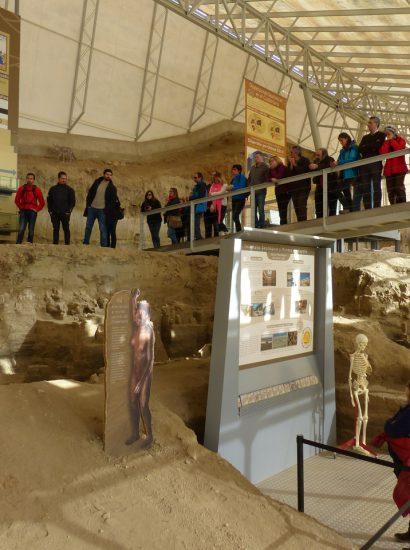 MVM 20170303 49 1 410x550 - Estación paleontológica Valle del Río Fardes (Fonelas) - Geoparque de Granada