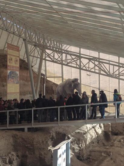 fonelas 1 - Palaeontological site Fonelas P-1 - Geoparque de Granada
