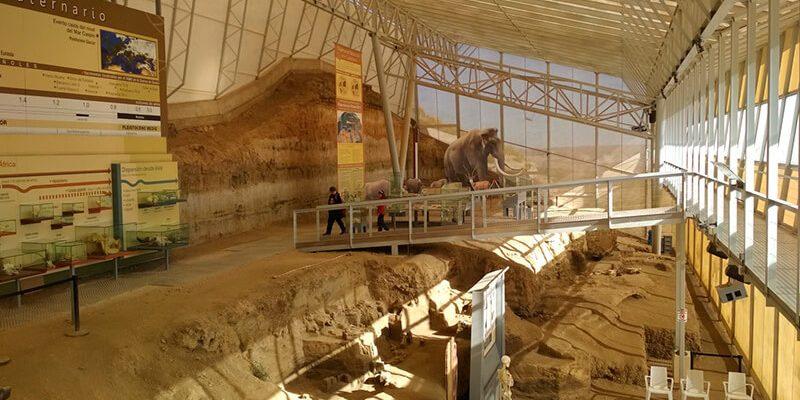 fonelas 800x400 - Palaeontological site Fonelas P-1 - Geoparque de Granada