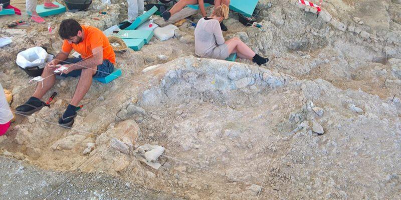 yacimiento fuente nueva 1 800x400 - Palaeontological Site Fuente Nueva-3 - Geoparque de Granada