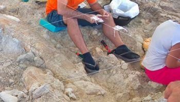 yacimiento fuente nueva 350x200 - Palaeontological Site Fuente Nueva-3 - Geoparque de Granada