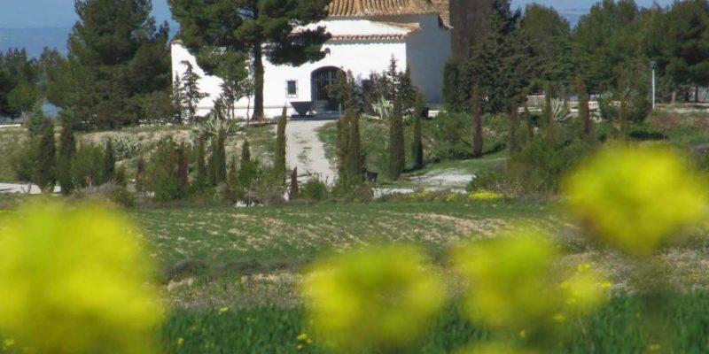 60968769 836972489992250 5516837237754429440 o 800x400 - Centro de Iniciativas Turísticas de Cúllar - Geoparque de Granada