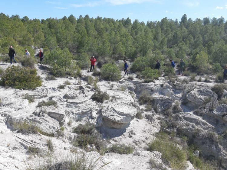 DIA CAMPO 02 2019 03 30 at 14.40.57 750x563 - Educación y participación ambiental en el Geoparque de Granada, un objetivo para todos los públicos. - Geoparque de Granada