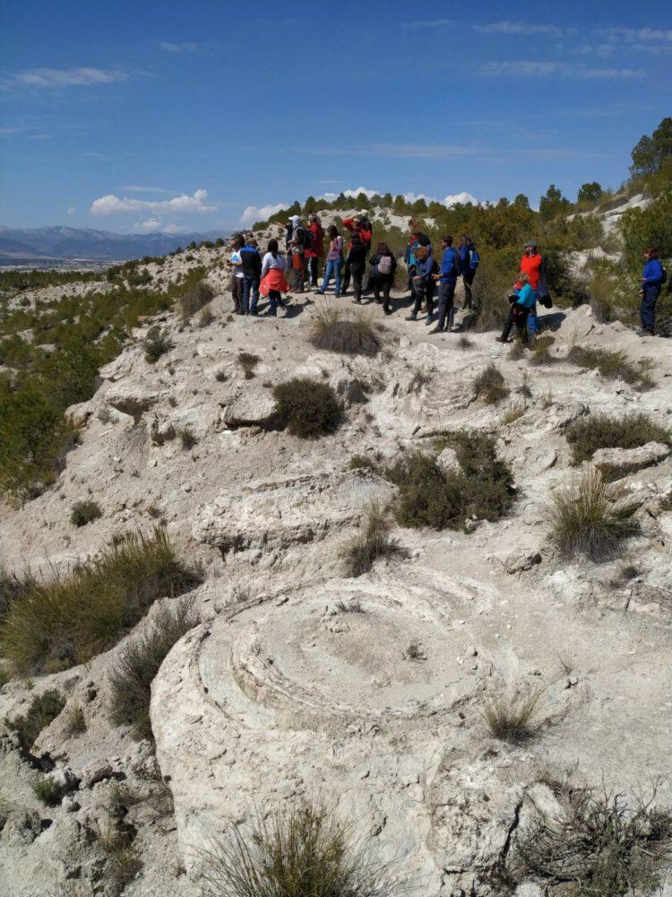 DIA CAMPO 02 2019 03 30 at 14.53.29 3 750x1000 - Educación y participación ambiental en el Geoparque de Granada, un objetivo para todos los públicos. - Geoparque de Granada